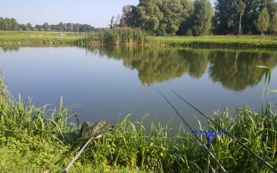 Eenvoudig en simpel vissen
