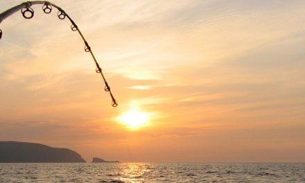 Met de tweede keer vissen is het raak !